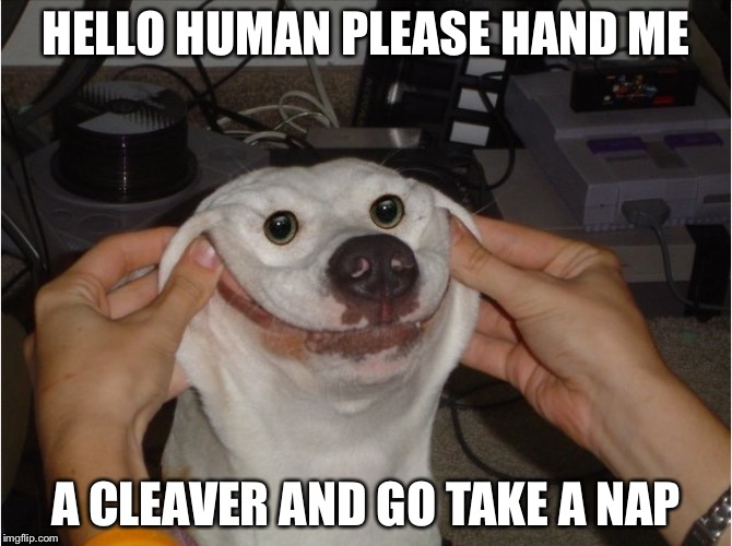 HELLO HUMAN PLEASE HAND ME A CLEAVER AND GO TAKE A NAP | image tagged in i won't murder u | made w/ Imgflip meme maker
