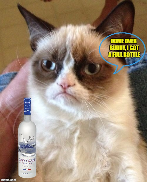 Grumpy Cat Meme | COME OVER BUDDY, I GOT A FULL BOTTLE | image tagged in memes,grumpy cat | made w/ Imgflip meme maker