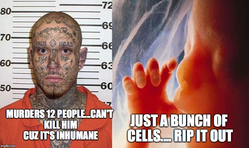 Liberal Logic 3 | MURDERS 12 PEOPLE...CAN'T KILL HIM CUZ IT'S INHUMANE JUST A BUNCH OF CELLS.... RIP IT OUT | image tagged in liberal logic 3 | made w/ Imgflip meme maker