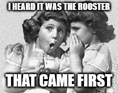 whisper | I HEARD IT WAS THE ROOSTER THAT CAME FIRST | image tagged in whisper | made w/ Imgflip meme maker