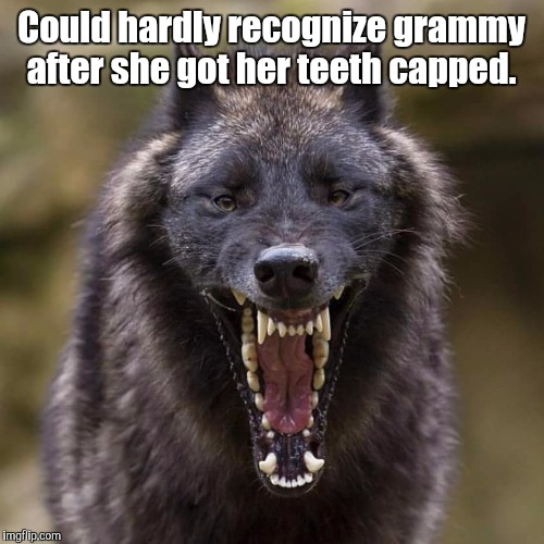 Wolf | Could hardly recognize grammy after she got her teeth capped. | image tagged in wolf | made w/ Imgflip meme maker