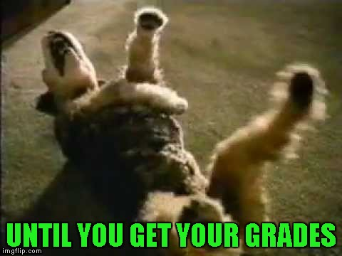 UNTIL YOU GET YOUR GRADES | made w/ Imgflip meme maker