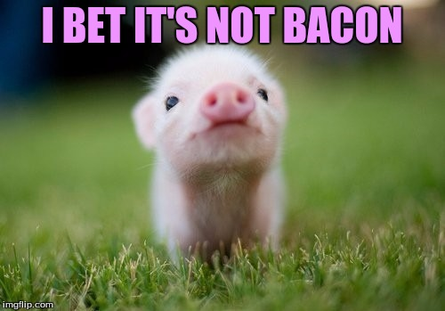 I BET IT'S NOT BACON | made w/ Imgflip meme maker