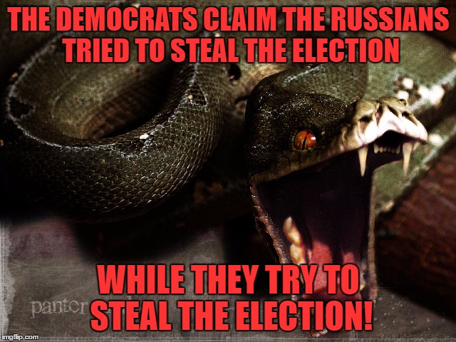 snake | THE DEMOCRATS CLAIM THE RUSSIANS TRIED TO STEAL THE ELECTION WHILE THEY TRY TO STEAL THE ELECTION! | image tagged in snake,russians,democrats,hillary,trump,election | made w/ Imgflip meme maker