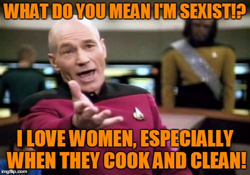 What are you talking about!? | WHAT DO YOU MEAN I'M SEXIST!? I LOVE WOMEN, ESPECIALLY WHEN THEY COOK AND CLEAN! | image tagged in memes,picard wtf,it came from the comments,you do understand satire right | made w/ Imgflip meme maker