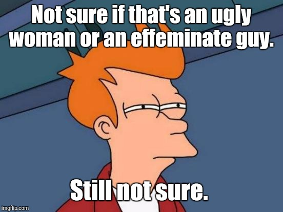 Futurama Fry Meme | Not sure if that's an ugly woman or an effeminate guy. Still not sure. | image tagged in memes,futurama fry | made w/ Imgflip meme maker