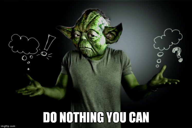 yoda shrug | DO NOTHING YOU CAN | image tagged in yoda shrug | made w/ Imgflip meme maker
