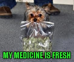 MY MEDICINE IS FRESH | made w/ Imgflip meme maker