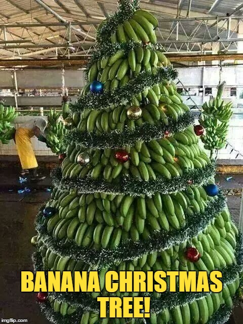 9 Days Left Until Christmas... | BANANA CHRISTMAS TREE! | image tagged in memes,funny,christmas,christmas tree,banana,fruit | made w/ Imgflip meme maker