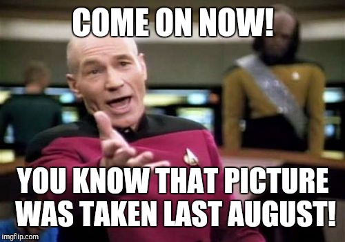Picard Wtf Meme | COME ON NOW! YOU KNOW THAT PICTURE WAS TAKEN LAST AUGUST! | image tagged in memes,picard wtf | made w/ Imgflip meme maker
