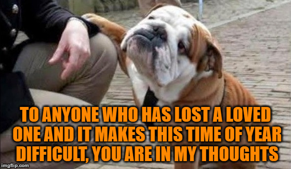 The Holidays Can Be A Difficult Time Of Year | TO ANYONE WHO HAS LOST A LOVED ONE AND IT MAKES THIS TIME OF YEAR DIFFICULT, YOU ARE IN MY THOUGHTS | image tagged in there there dog,you're in my thoughts,you can make it though,stay positive,remember the good times | made w/ Imgflip meme maker