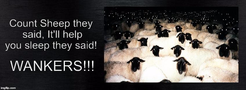 1g57ll counting sheep! imgflip