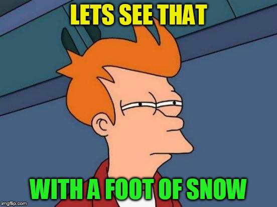 Futurama Fry Meme | LETS SEE THAT WITH A FOOT OF SNOW | image tagged in memes,futurama fry | made w/ Imgflip meme maker
