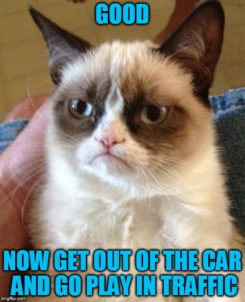 Grumpy Cat Meme | GOOD NOW GET OUT OF THE CAR AND GO PLAY IN TRAFFIC | image tagged in memes,grumpy cat | made w/ Imgflip meme maker
