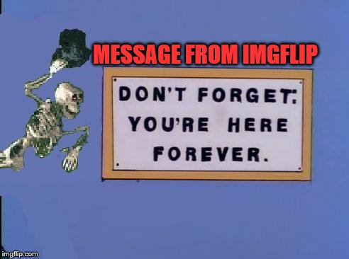 This has been a message from imgflip | MESSAGE FROM IMGFLIP | image tagged in imgflip,message,skeleton,funny | made w/ Imgflip meme maker