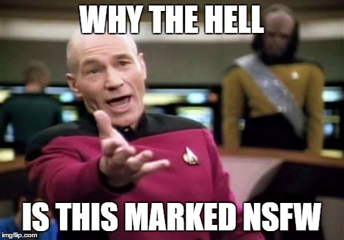 Picard Wtf Meme | WHY THE HELL IS THIS MARKED NSFW | image tagged in memes,picard wtf | made w/ Imgflip meme maker