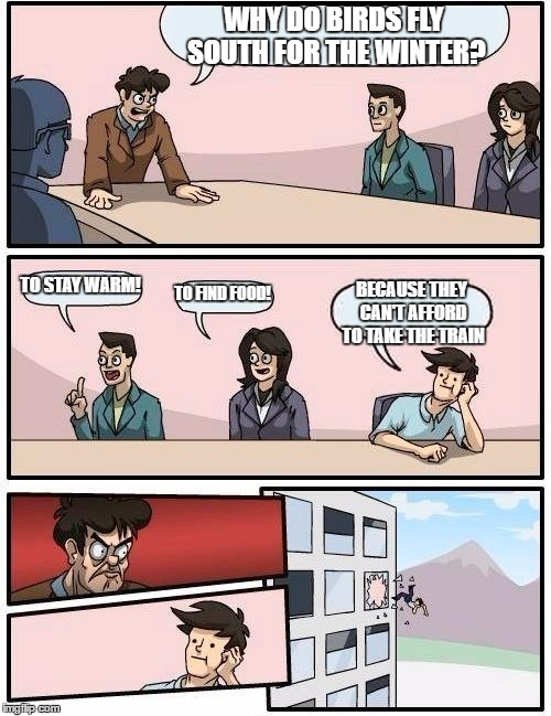 Boardroom Meeting Suggestion Meme | WHY DO BIRDS FLY SOUTH FOR THE WINTER? TO STAY WARM! TO FIND FOOD! BECAUSE THEY CAN'T AFFORD TO TAKE THE TRAIN | image tagged in memes,boardroom meeting suggestion | made w/ Imgflip meme maker