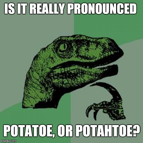 Philosoraptor Meme | IS IT REALLY PRONOUNCED POTATOE, OR POTAHTOE? | image tagged in memes,philosoraptor | made w/ Imgflip meme maker
