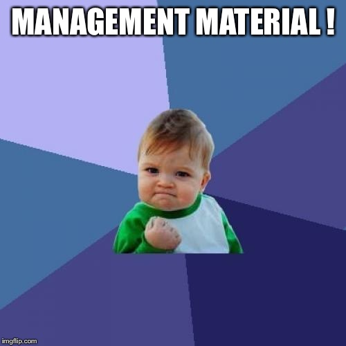 Success Kid Meme | MANAGEMENT MATERIAL ! | image tagged in memes,success kid | made w/ Imgflip meme maker