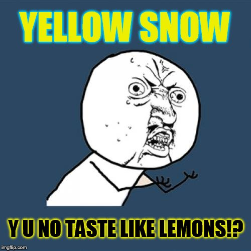 Not that anyone has ever eaten it, right... right?! | YELLOW SNOW Y U NO TASTE LIKE LEMONS!? | image tagged in memes,y u no,just chillin',eww,relatable,eating | made w/ Imgflip meme maker