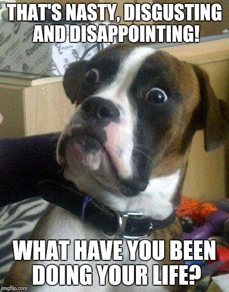 Surprised Dog | THAT'S NASTY, DISGUSTING AND DISAPPOINTING! WHAT HAVE YOU BEEN DOING YOUR LIFE? | image tagged in surprised dog | made w/ Imgflip meme maker