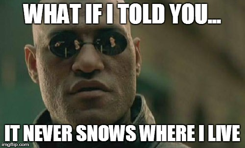 Matrix Morpheus Meme | WHAT IF I TOLD YOU... IT NEVER SNOWS WHERE I LIVE | image tagged in memes,matrix morpheus | made w/ Imgflip meme maker