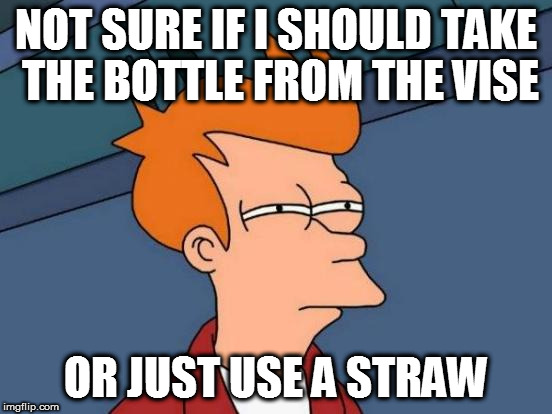 Futurama Fry Meme | NOT SURE IF I SHOULD TAKE THE BOTTLE FROM THE VISE OR JUST USE A STRAW | image tagged in memes,futurama fry | made w/ Imgflip meme maker