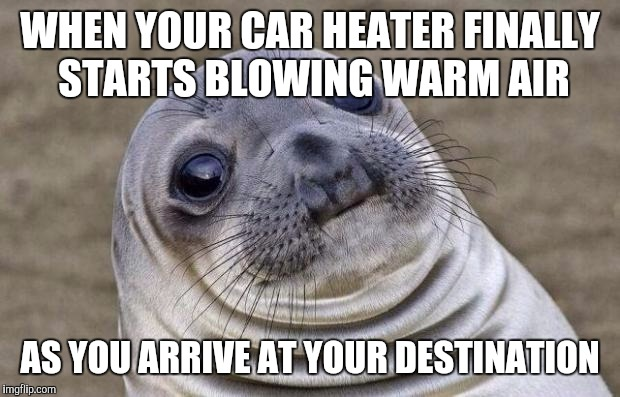 Dreaming of the tropics | WHEN YOUR CAR HEATER FINALLY STARTS BLOWING WARM AIR AS YOU ARRIVE AT YOUR DESTINATION | image tagged in memes,awkward moment sealion | made w/ Imgflip meme maker