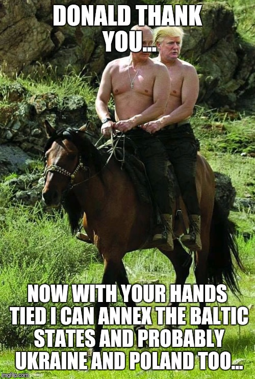 Trump Putin | DONALD THANK YOU... NOW WITH YOUR HANDS TIED I CAN ANNEX THE BALTIC STATES AND PROBABLY UKRAINE AND POLAND TOO... | image tagged in trump putin | made w/ Imgflip meme maker