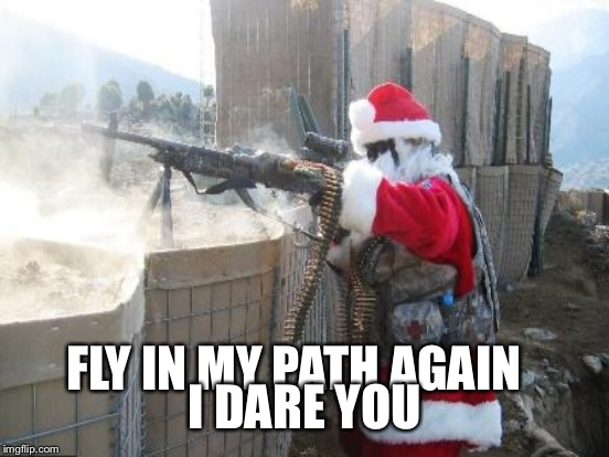 FLY IN MY PATH AGAIN I DARE YOU | made w/ Imgflip meme maker