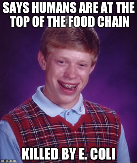 Says humans are at the top of the food chain... | SAYS HUMANS ARE AT THE TOP OF THE FOOD CHAIN KILLED BY E. COLI | image tagged in memes,bad luck brian,e coli,vegan | made w/ Imgflip meme maker