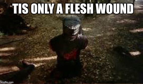 TIS ONLY A FLESH WOUND | made w/ Imgflip meme maker