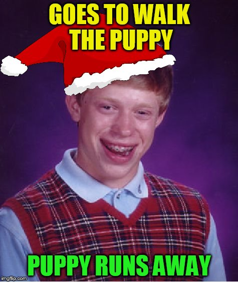 Bad Luck Brian Meme | GOES TO WALK THE PUPPY PUPPY RUNS AWAY | image tagged in memes,bad luck brian | made w/ Imgflip meme maker