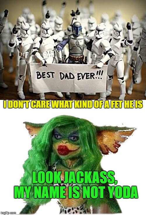 I DON'T CARE WHAT KIND OF A FET HE IS LOOK JACKASS, MY NAME IS NOT YODA | made w/ Imgflip meme maker