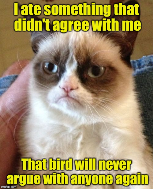 Grumpy Cat Meme | I ate something that didn't agree with me That bird will never argue with anyone again | image tagged in memes,grumpy cat | made w/ Imgflip meme maker