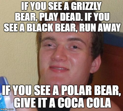 10 Guy Meme | IF YOU SEE A GRIZZLY BEAR, PLAY DEAD. IF YOU SEE A BLACK BEAR, RUN AWAY IF YOU SEE A POLAR BEAR, GIVE IT A COCA COLA | image tagged in memes,10 guy | made w/ Imgflip meme maker