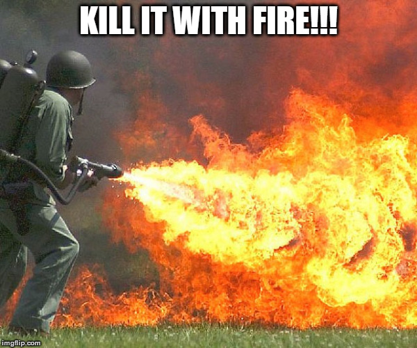 Flamethrower | KILL IT WITH FIRE!!! | image tagged in flamethrower | made w/ Imgflip meme maker