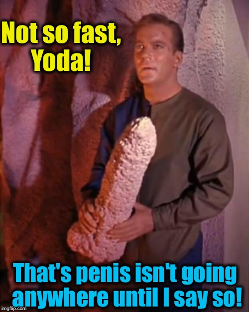 Spock dildo | Not so fast, Yoda! That's p**is isn't going anywhere until I say so! | image tagged in spock dildo | made w/ Imgflip meme maker