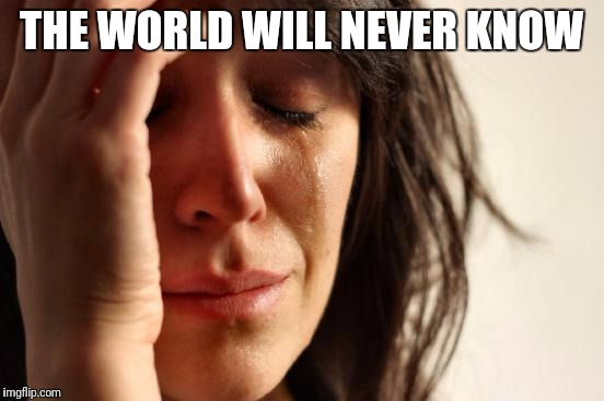 First World Problems Meme | THE WORLD WILL NEVER KNOW | image tagged in memes,first world problems | made w/ Imgflip meme maker