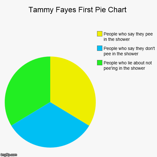 Tammy Fayes First Pie Chart | People who lie about not pee'ing in the shower, People who say they don't pee in the shower, People who say th | image tagged in funny,pie charts | made w/ Imgflip pie chart maker