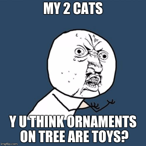 The problem I have every christmas. | MY 2 CATS Y U THINK ORNAMENTS ON TREE ARE TOYS? | image tagged in memes,y u no,christmas,christmas tree,cats | made w/ Imgflip meme maker
