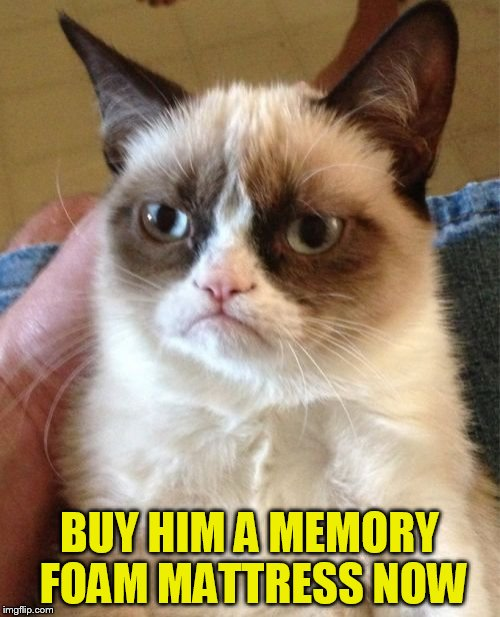 Grumpy Cat Meme | BUY HIM A MEMORY FOAM MATTRESS NOW | image tagged in memes,grumpy cat | made w/ Imgflip meme maker