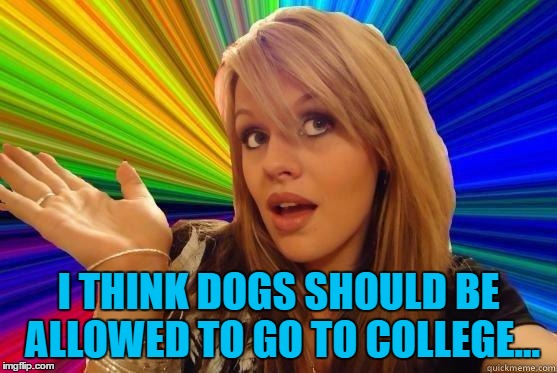 I THINK DOGS SHOULD BE ALLOWED TO GO TO COLLEGE... | made w/ Imgflip meme maker