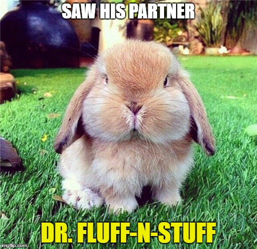 SAW HIS PARTNER DR. FLUFF-N-STUFF | made w/ Imgflip meme maker