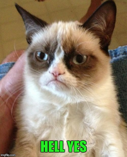Grumpy Cat Meme | HELL YES | image tagged in memes,grumpy cat | made w/ Imgflip meme maker