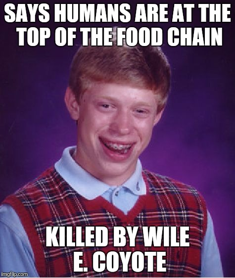 Bad Luck Brian Meme | SAYS HUMANS ARE AT THE TOP OF THE FOOD CHAIN KILLED BY WILE E. COYOTE | image tagged in memes,bad luck brian | made w/ Imgflip meme maker