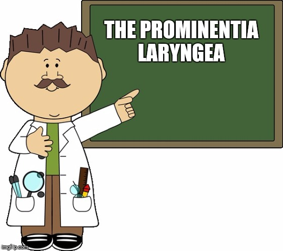 THE PROMINENTIA LARYNGEA | made w/ Imgflip meme maker