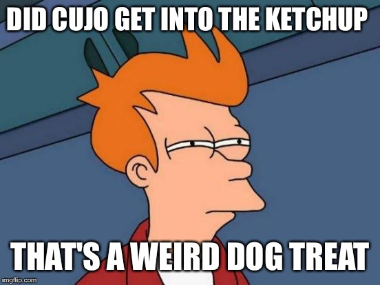 Futurama Fry Meme | DID CUJO GET INTO THE KETCHUP THAT'S A WEIRD DOG TREAT | image tagged in memes,futurama fry | made w/ Imgflip meme maker