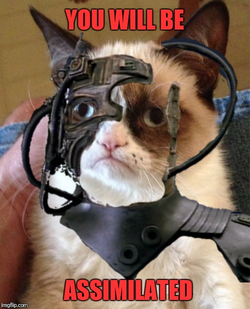 New to imgflip?  Be careful, it's addictive. |  YOU WILL BE; ASSIMILATED | image tagged in memes,grumpy cat,star trek the next generation,the borg | made w/ Imgflip meme maker