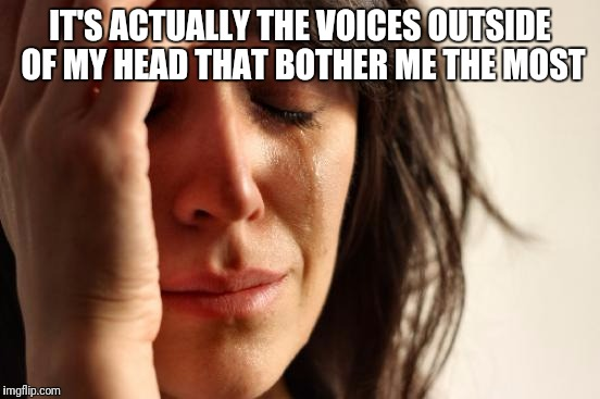 First World Problems Meme | IT'S ACTUALLY THE VOICES OUTSIDE OF MY HEAD THAT BOTHER ME THE MOST | image tagged in memes,first world problems | made w/ Imgflip meme maker